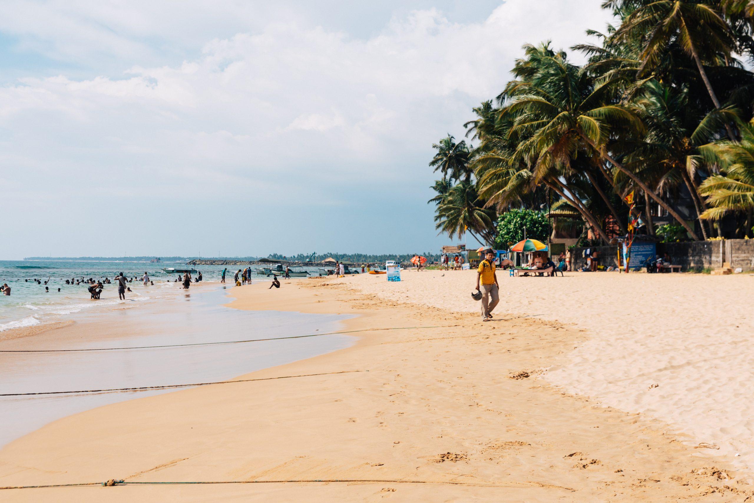 Pinwatta – Sri Lanka